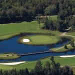 golf-golf-owl-s-head-217807963