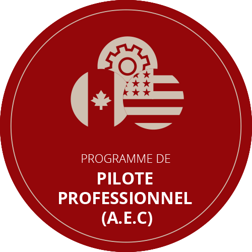 formation aec heliraft pilote professionnel