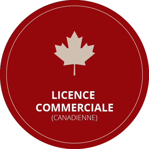 licence-pilote-professionnel-helicraft